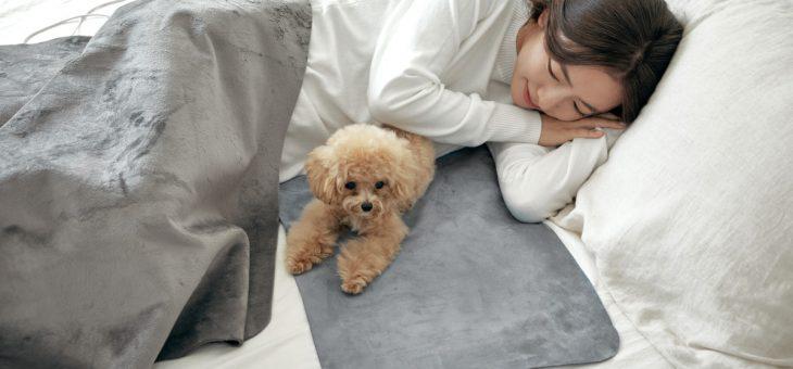 INKO、インクで温める特許技術のホットマット「INKO Sleep+」マクアケにて先行発売 ~銀ナノインクで発熱&電磁波99.9%カット、人にも環境にも優しい逸品~